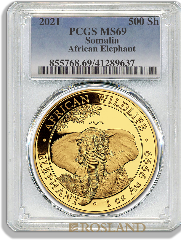 1 Unze Goldmünze Somalia Elefant 2021 PCGS MS-69
