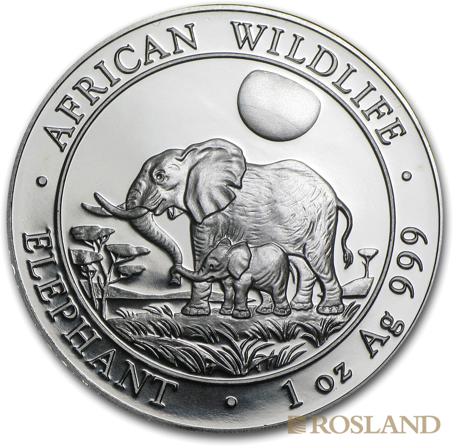 1 Unze Silbermünze Somalia Elefant 2011