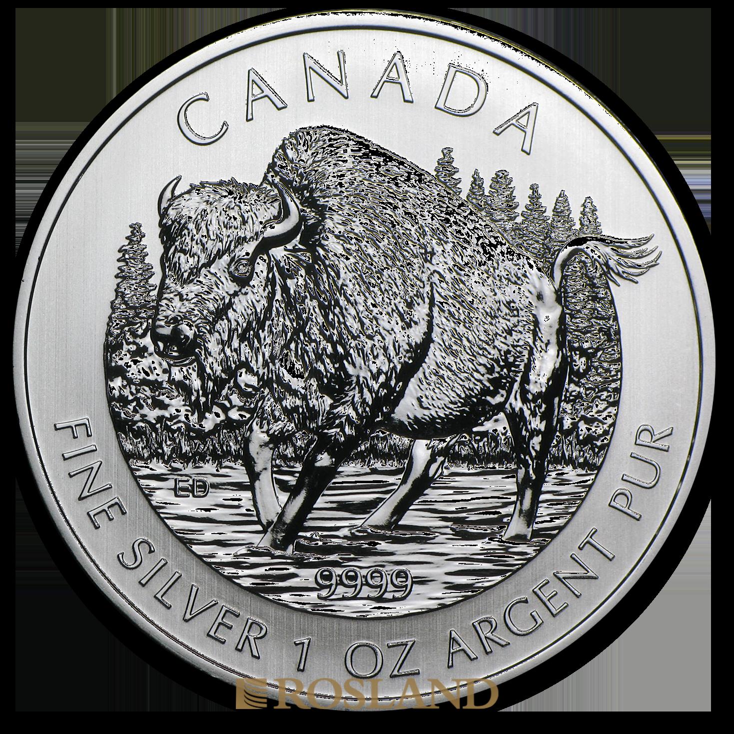1 Unze Silbermünze Wildlife Bison 2013