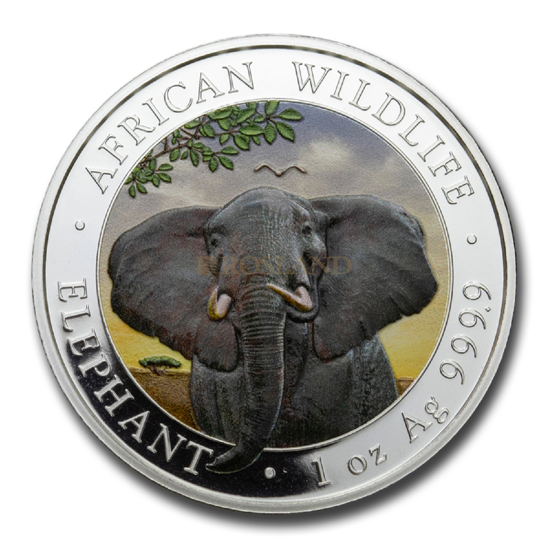 1 Unze Silbermünze Somalia Elefant 2021 (Koloriert)