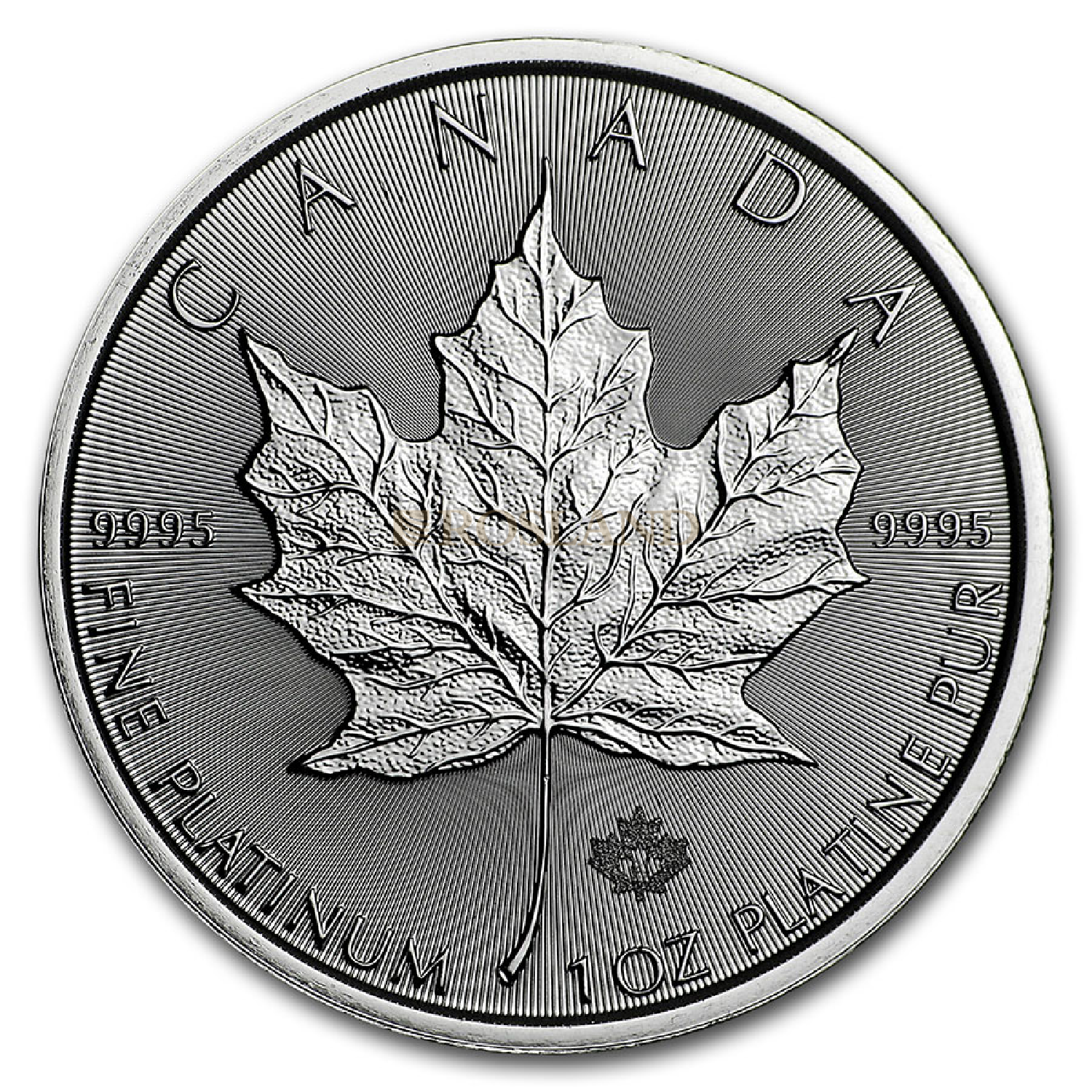 1 Unze Platinmünze Kanada Maple Leaf 2021