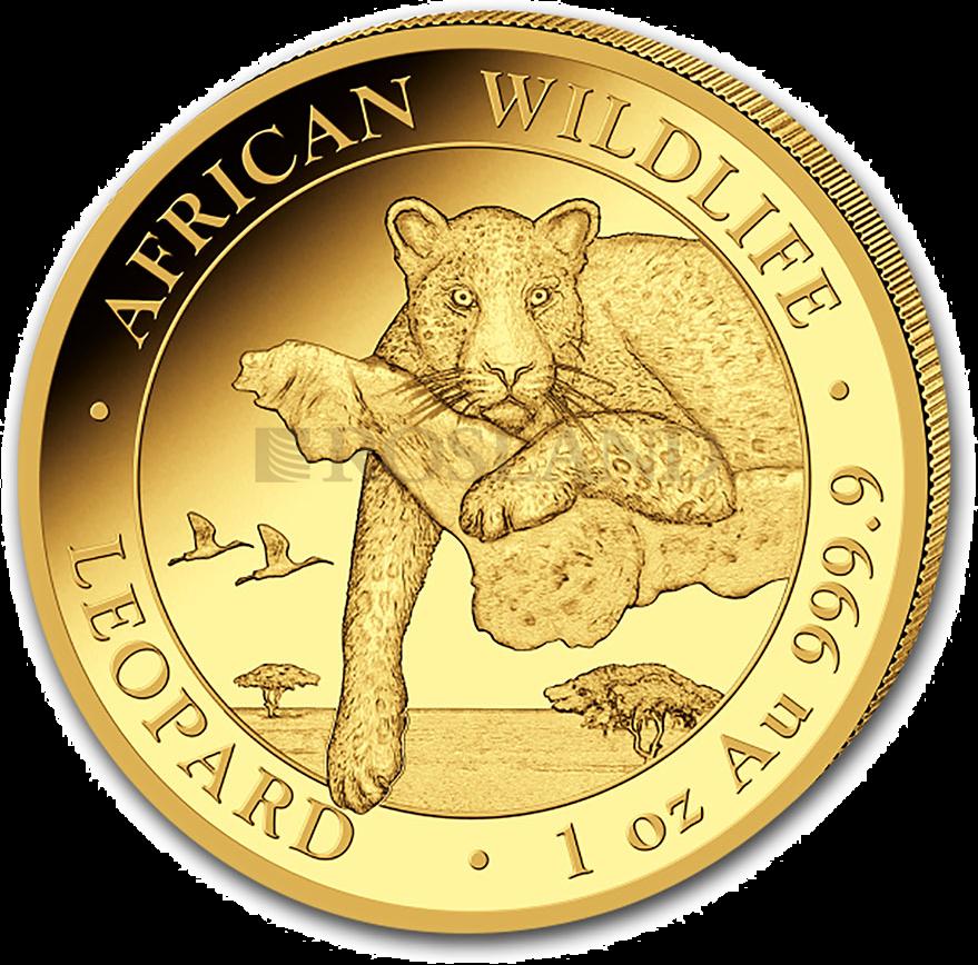 1 Unze Goldmünze Somalia Leopard 2020